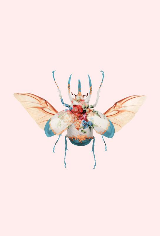 Vintage Beetle -Alubild