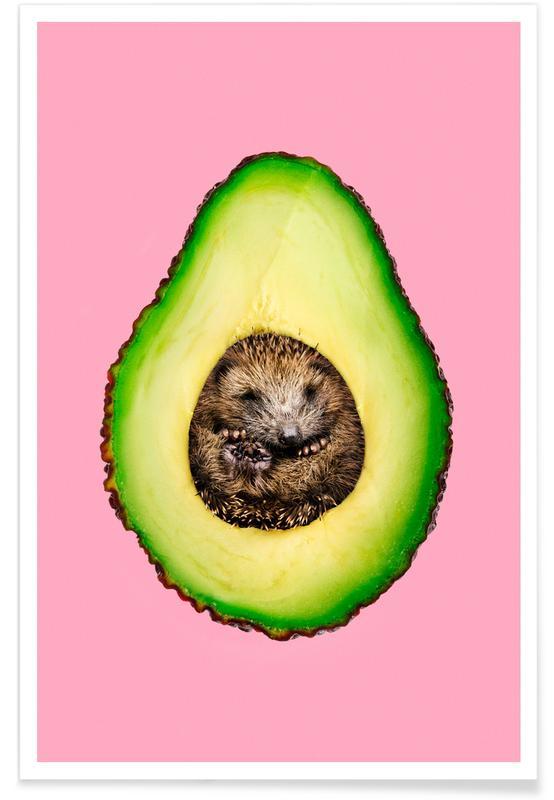 Funny, Hedgehocado Poster