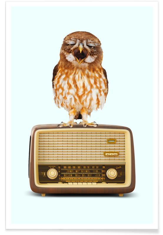 Singing Owl 2 0 poster