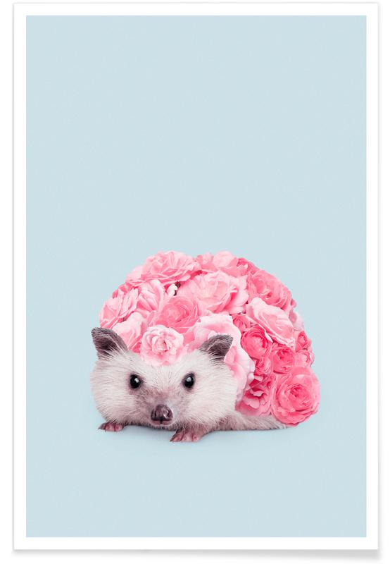 Hedgerosehog Poster