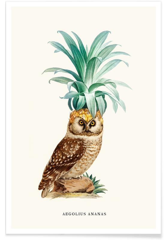 Ugler, Ananas, Pineapple Owl Vintage Plakat