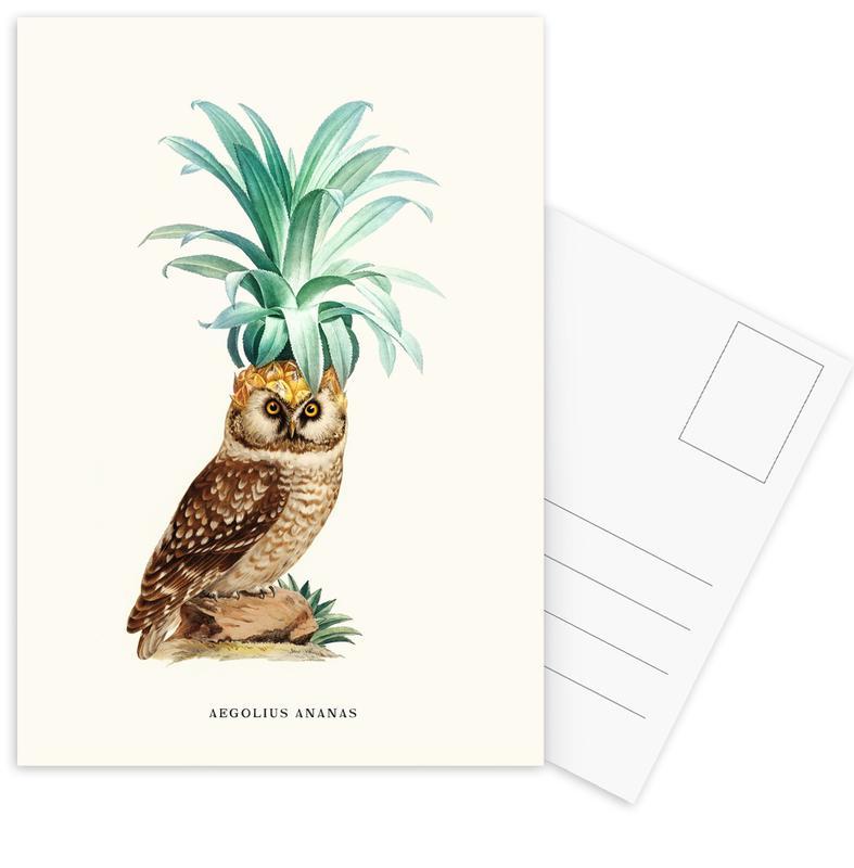 Chouettes, Ananas, Pineapple Owl Vintage cartes postales