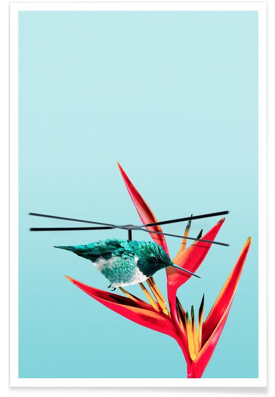 Helibird -Poster