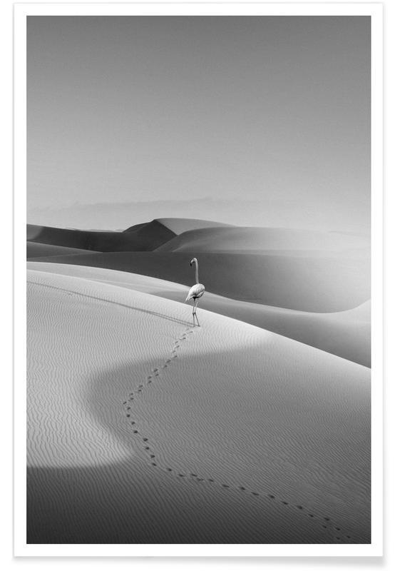 Woestijn, Zwart en wit, Flamingo's, Flamingo In The Desert poster