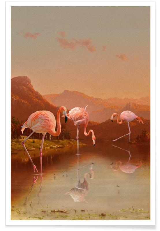 Flamants roses, Flamingo Lake affiche