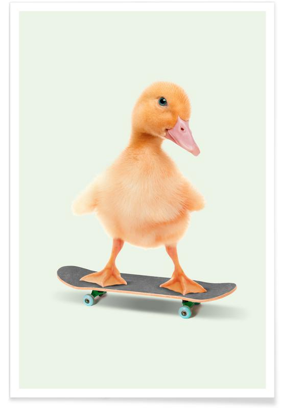 Grappig, Eenden, Skateboarding Duck poster