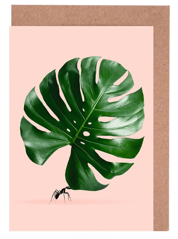 Monstera Ant Greeting Card Set