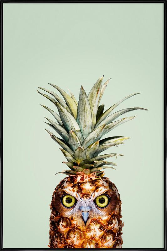 Pineapple Owl -Bild mit Kunststoffrahmen