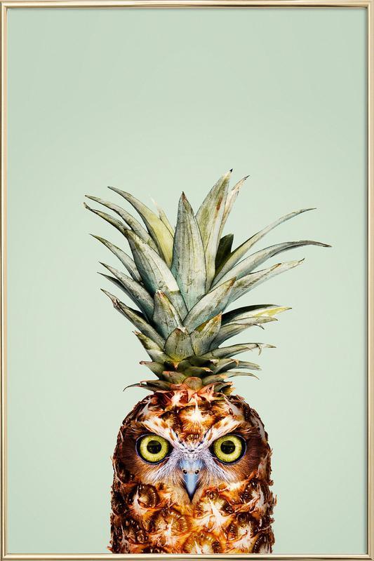 Pineapple Owl Poster in Aluminium Frame