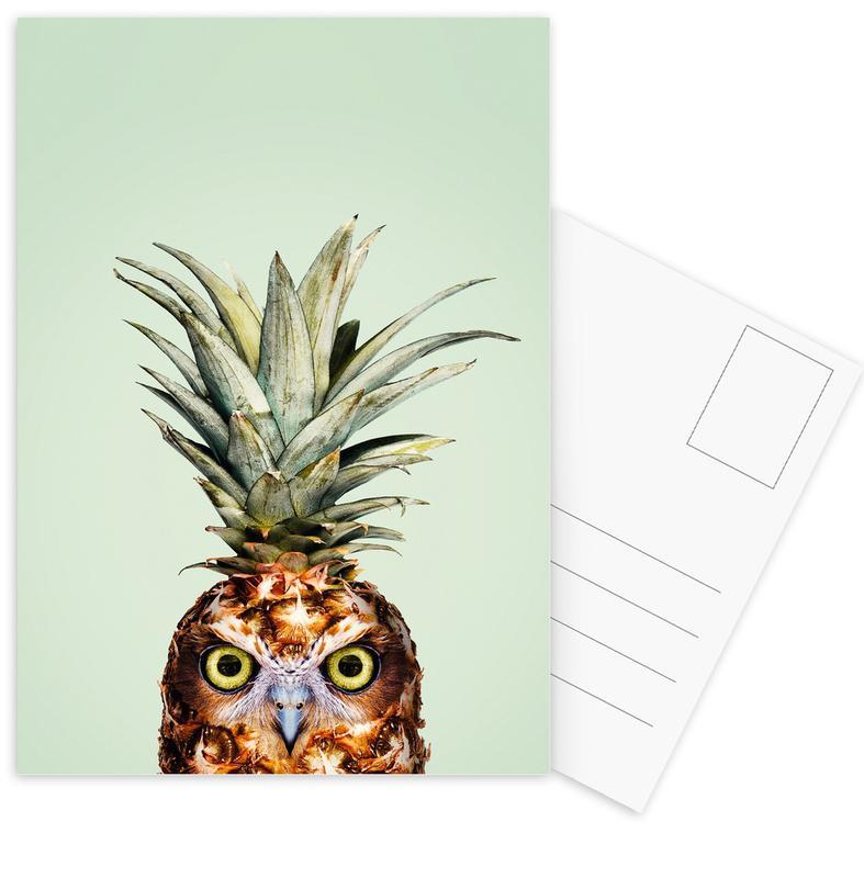 Funny, Owls, Pineapples, Pineapple Owl Postcard Set