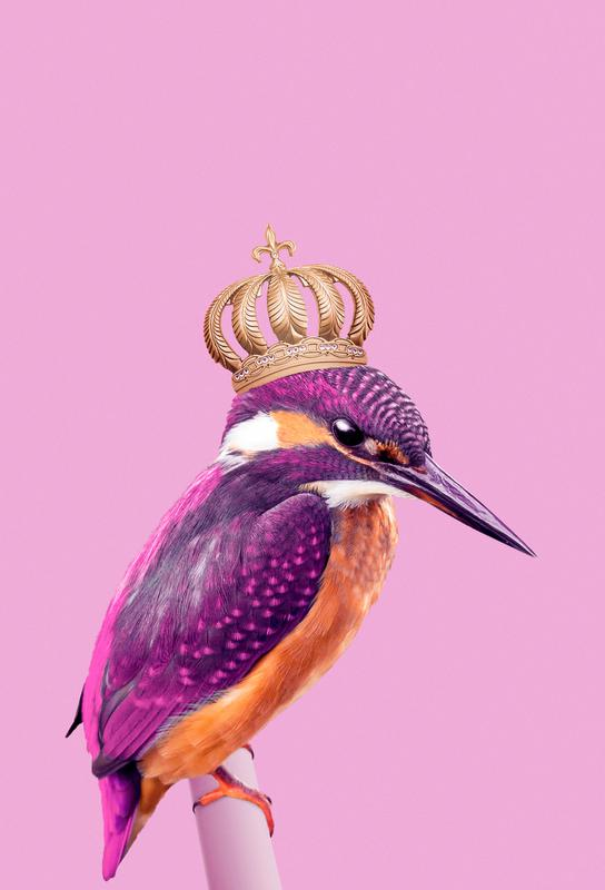 Queen Fisher Acrylic Print
