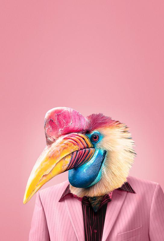 Schräger Vogel Impression sur alu-Dibond
