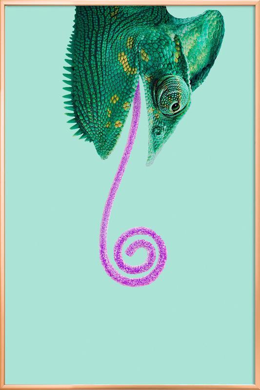 Candy Chameleon poster in aluminium lijst
