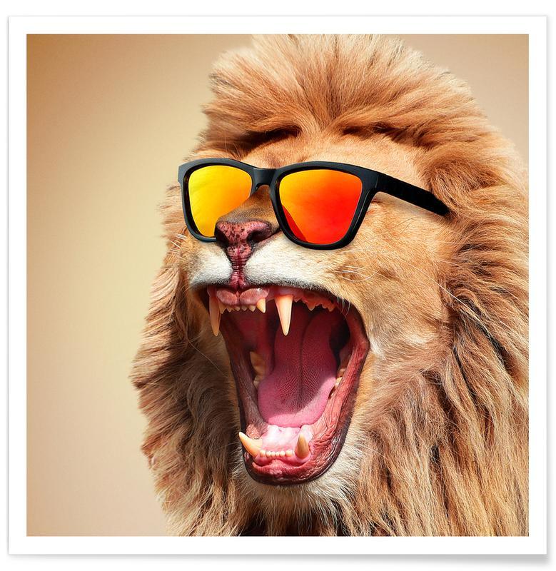 Humor, Safari dyr, Sunny Lion Plakat