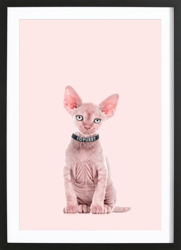 All Cats Are Beautiful Framed Print