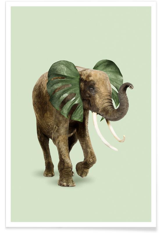 Éléphants, Philophant affiche