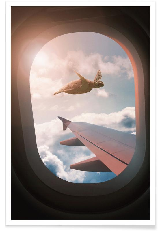 Flying Turtle affiche