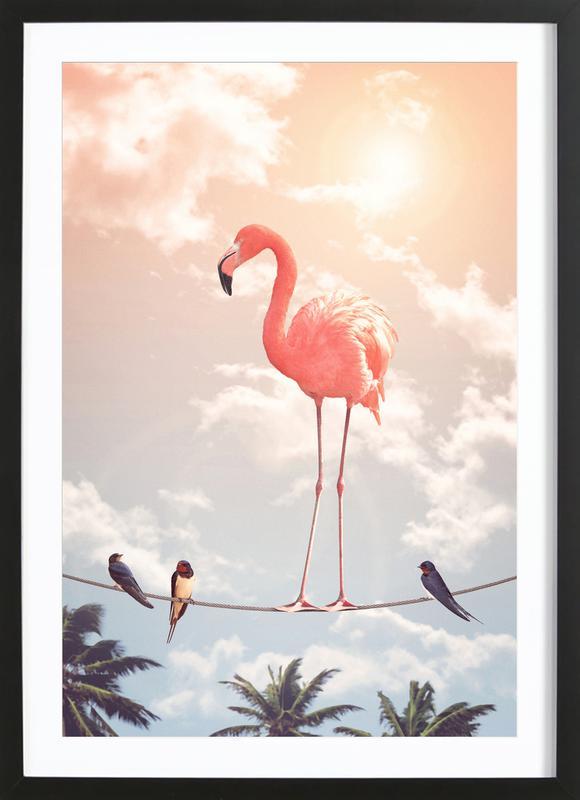 Flamingo and Friends ingelijste print