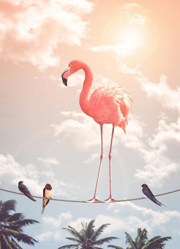 Flamingo and Friends -Leinwandbild