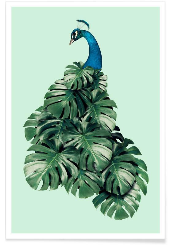 Peacocks, Monstera Bird Poster