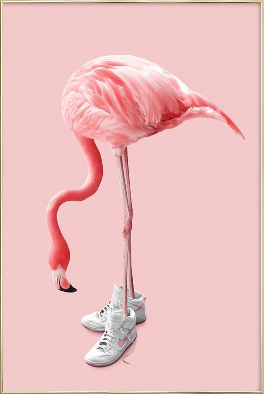 Sneaker Flamingo Plakat i aluminiumsramme