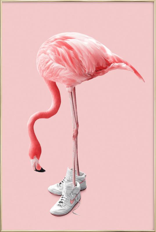Sneaker Flamingo -Poster im Alurahmen