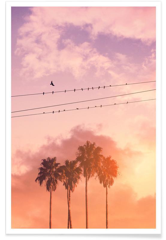 Palmbomen, Zonsondergangen, Birds on a Wire poster