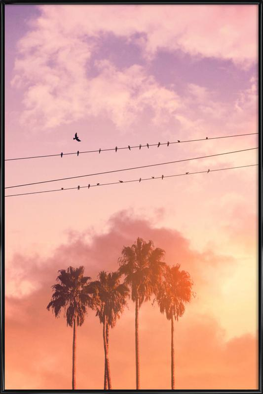 Birds on a Wire Framed Poster