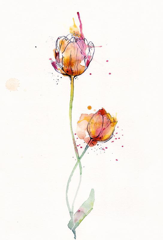 Tulip -Acrylglasbild
