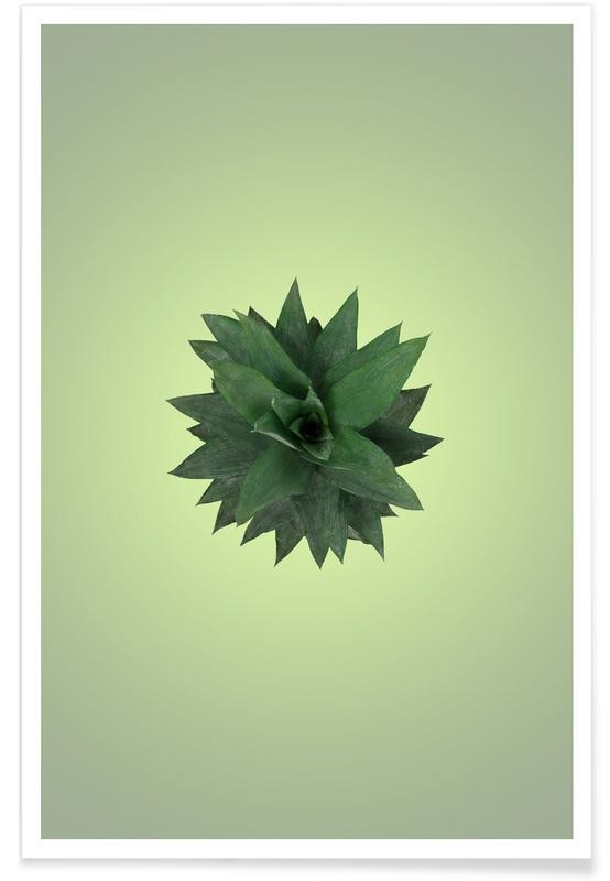 Pineapples, Air Pineapple Poster