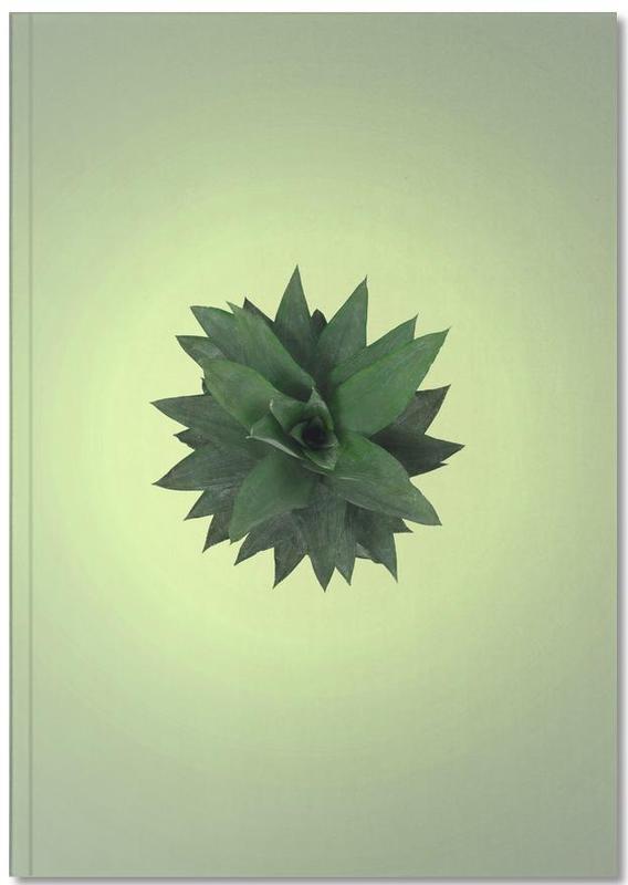 Ananas, Air Pineapple Notebook