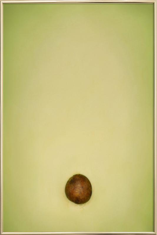 Avocado Poster in Aluminium Frame