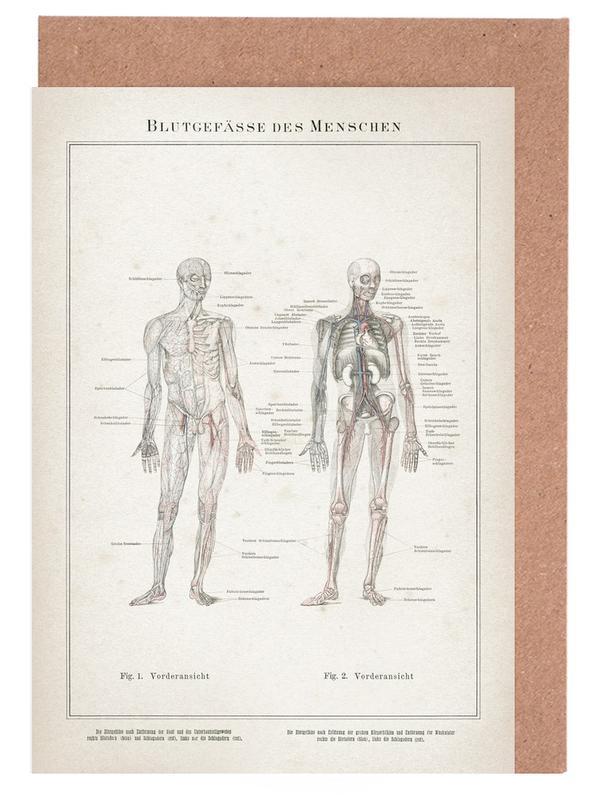 Vintage, Meyers 7 Blutgefäße des Menschen -Grußkarten-Set