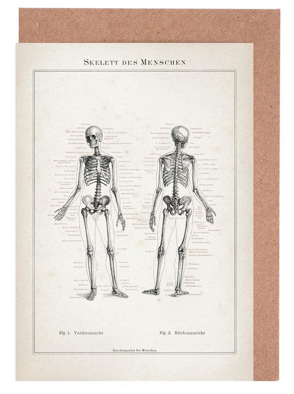 Skelett des Menschen - Meyers -Grußkarten-Set