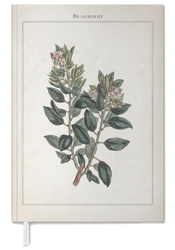 Bearberry - Extinct -Terminplaner