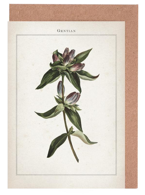 Vintage, Extinct 1 Gentian -Grußkarten-Set