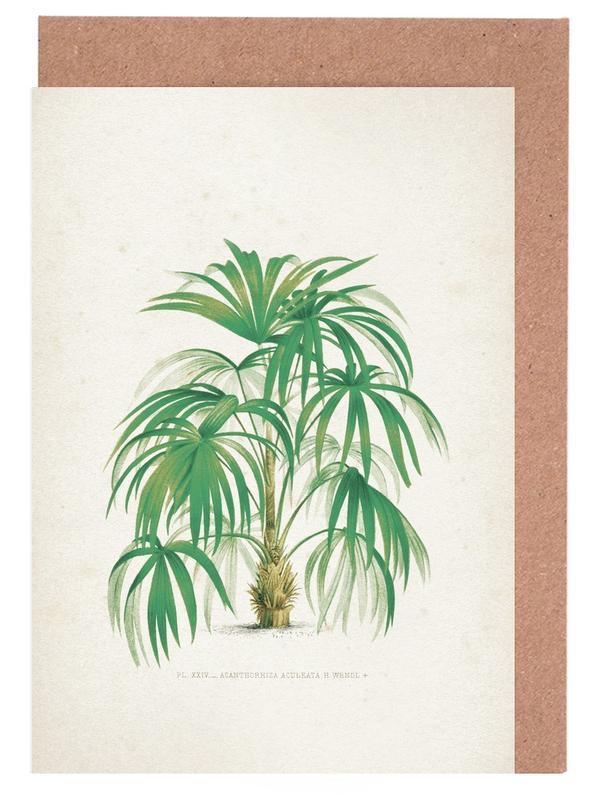 Blätter & Pflanzen, Kerchove 4 Les Palmiers 24 -Grußkarten-Set