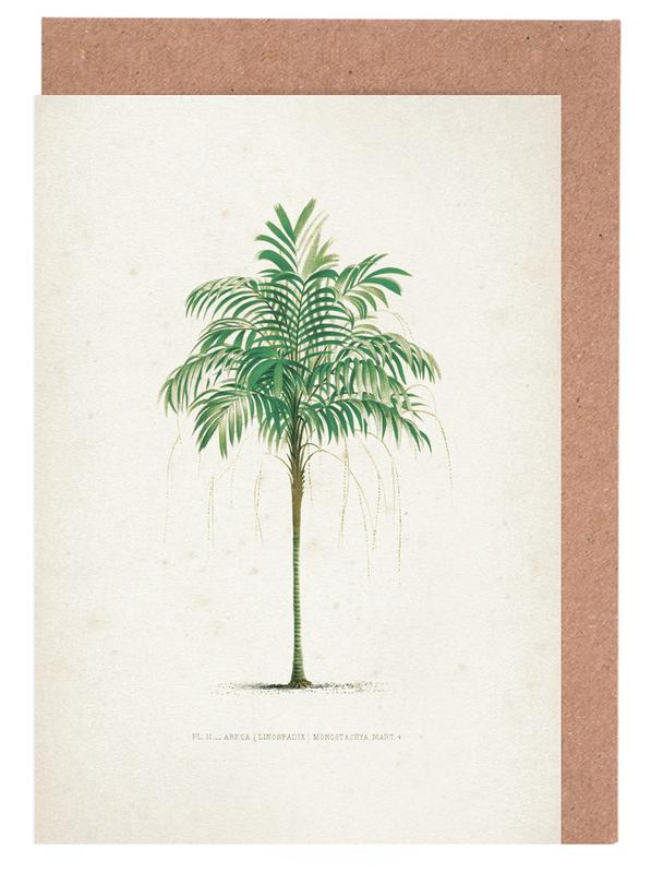 Blätter & Pflanzen, Kerchove 3 Les Palmiers 2 -Grußkarten-Set