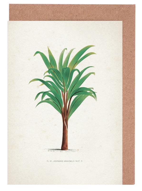Blätter & Pflanzen, Kerchove 3 Les Palmiers 15 -Grußkarten-Set