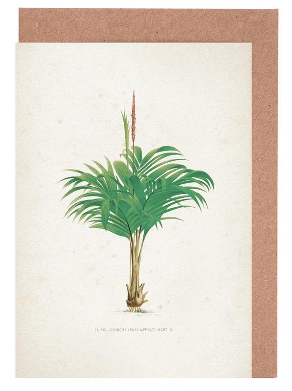 Blätter & Pflanzen, Kerchove 4 Les Palmiers 19 -Grußkarten-Set