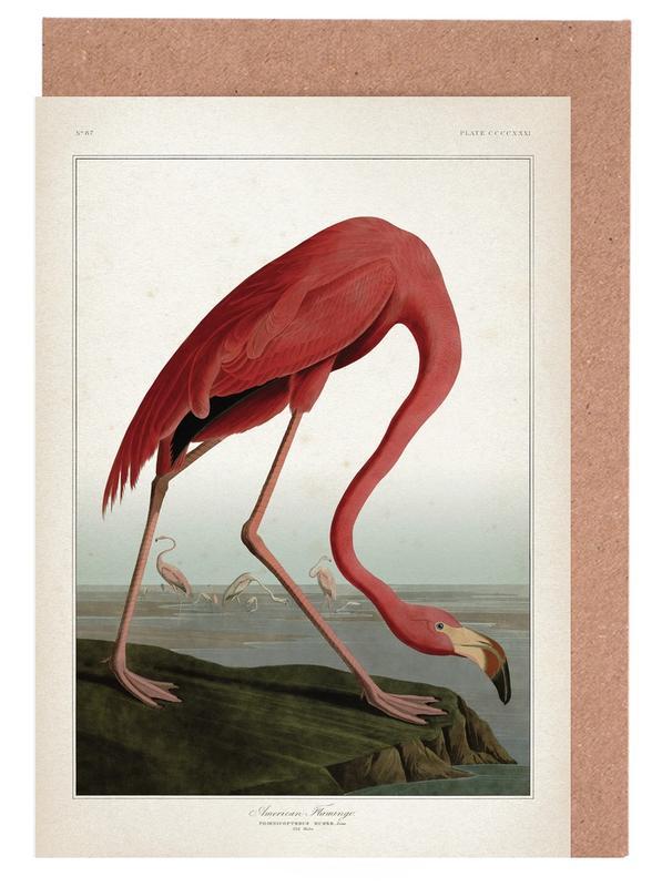 Vintage, Flamingos, Audubon 1 American Flamingo -Grußkarten-Set