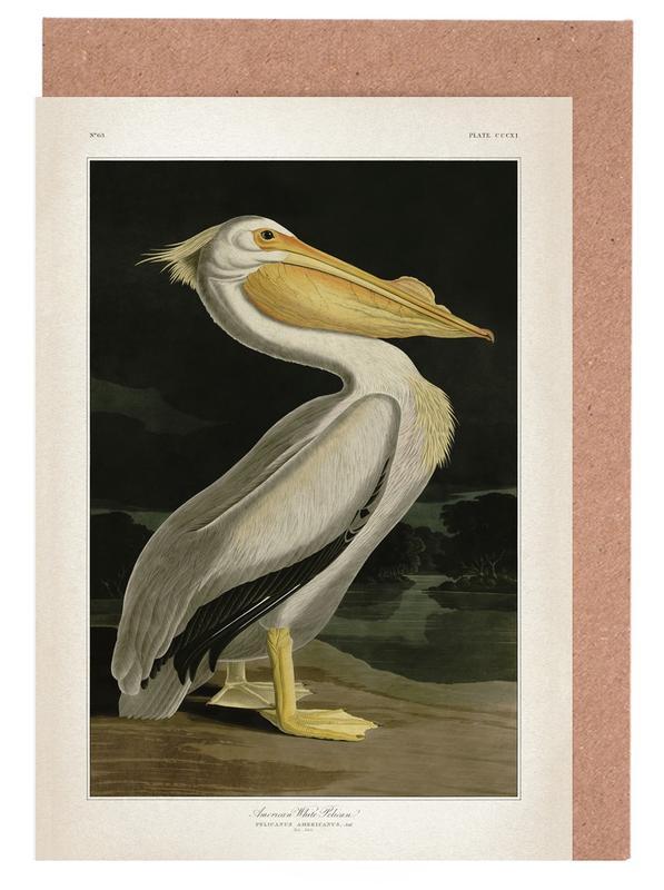 Pelikane, Vintage, Audubon 1 White Pelican -Grußkarten-Set