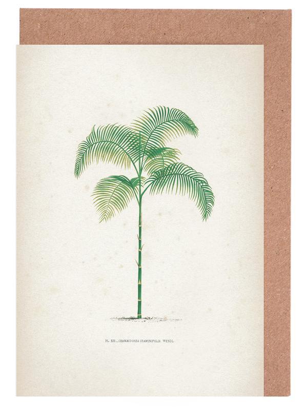 Palmen, Vintage, Kerchove 2 Les Palmiers 13 -Grußkarten-Set