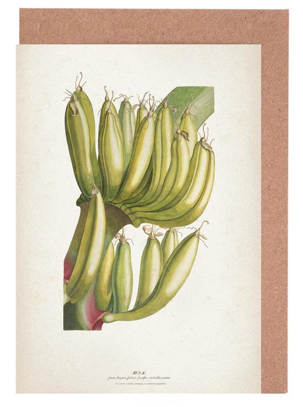 Musae Primus - Ehret cartes de vœux