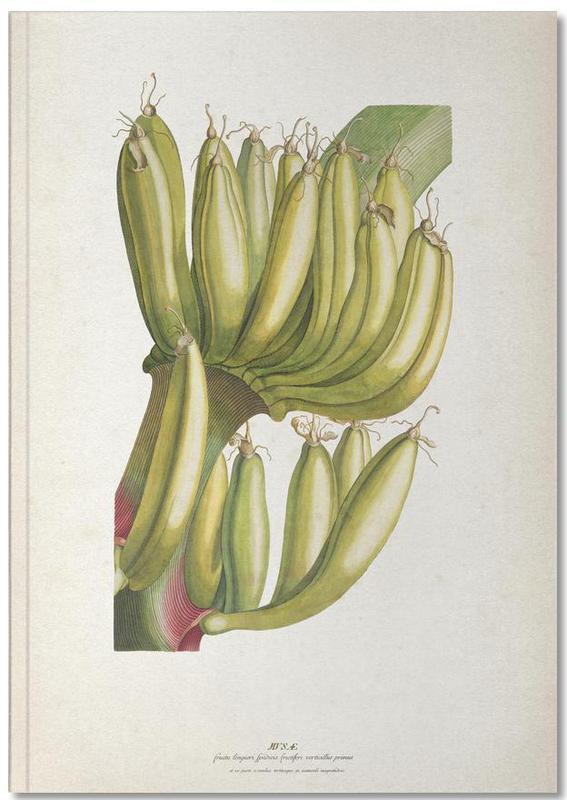 Musae Primus - Ehret Notebook