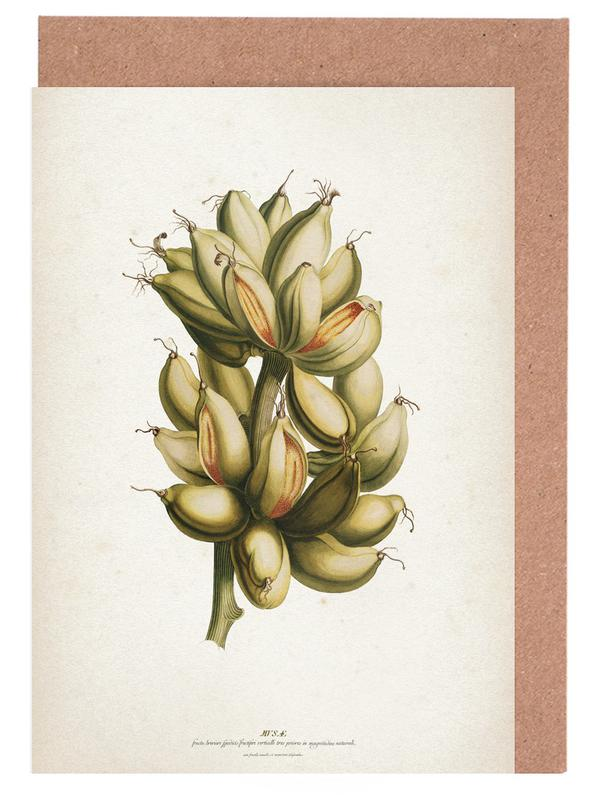 Musae Priores - Ehret cartes de vœux