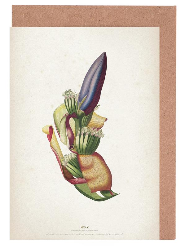 Musae Spadix - Ehret cartes de vœux