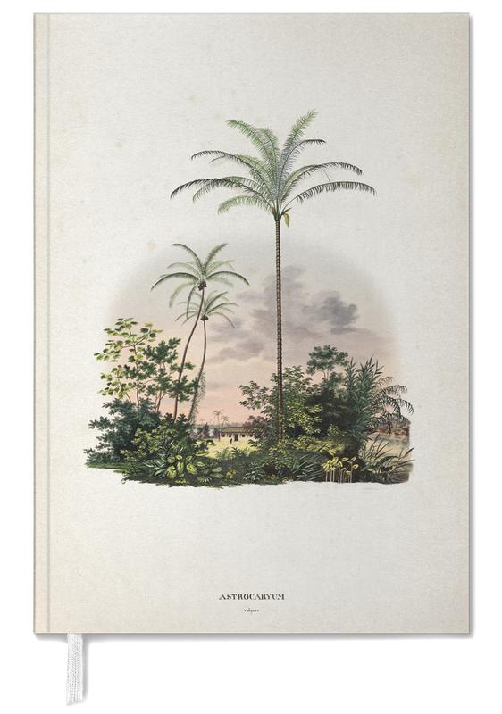 Astrocaryum Vulgare - Martius -Terminplaner