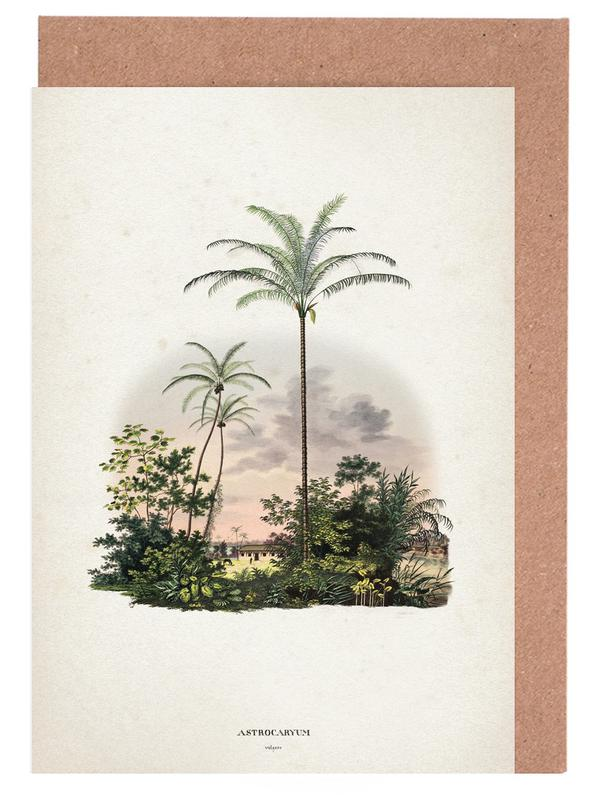 Astrocaryum Vulgare - Martius -Grußkarten-Set