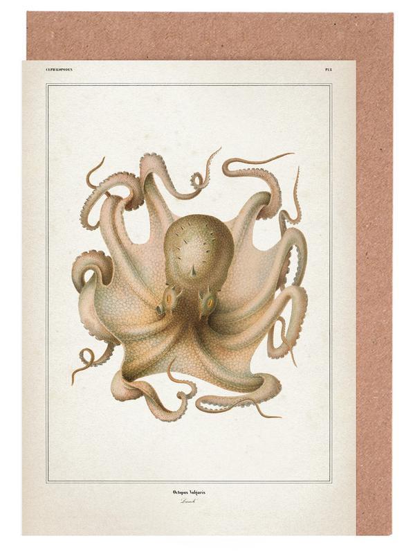 Vintage, Kraken, Octopus Vulgaris - Vérany -Grußkarten-Set
